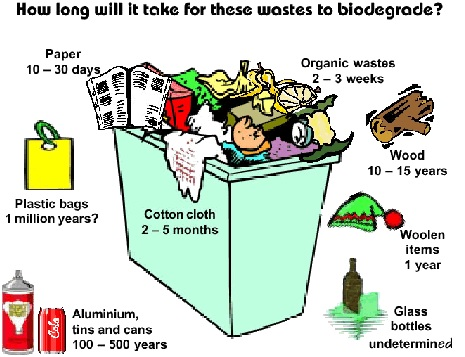 Time taken to biodegrade