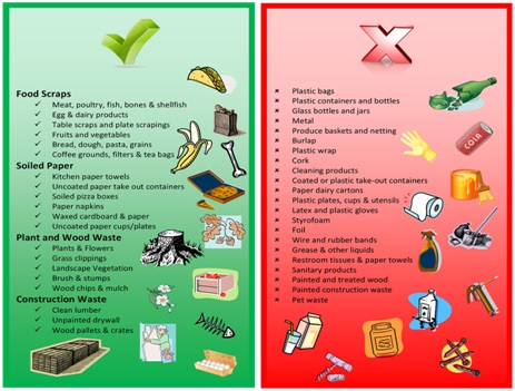 Image: What to recycle and not to recycle?