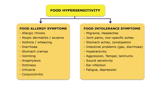 Food Hypersensitivity : Symptoms of Food Allergy & Food Intolerance