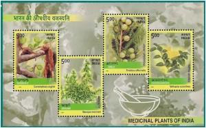 Plants amongst us