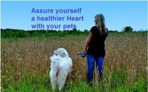 A Healthier Heart