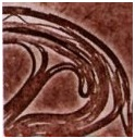 Filamentous - Bacteria