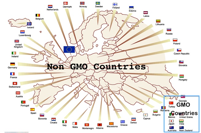 Another country banned GMOs: Germany Follows Scotland's Lead And Opts To Ban GMOs