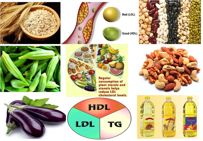 diet to reduce cholesterol india