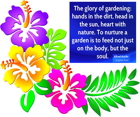THE HEALING POWER OF GARDENING