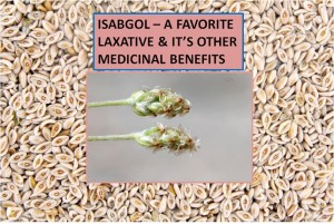 ISABGOL - A WONDERFUL & FAVORITE MEDICINE OF ALL