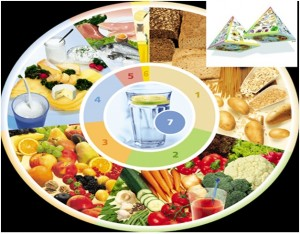 Nutrition Circle & 3D pyramid German Food guidelines