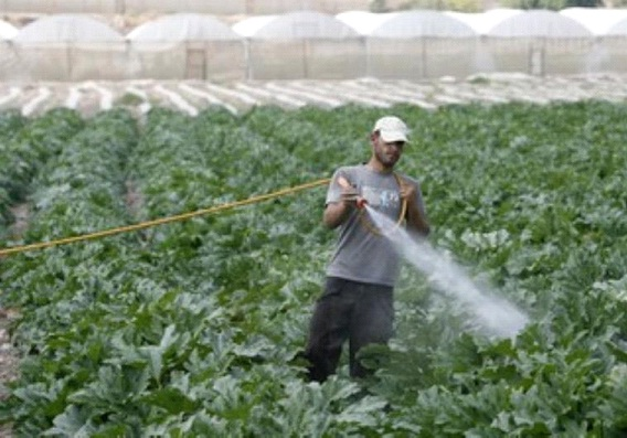 PESTICIDES AS WAR WEAPONS