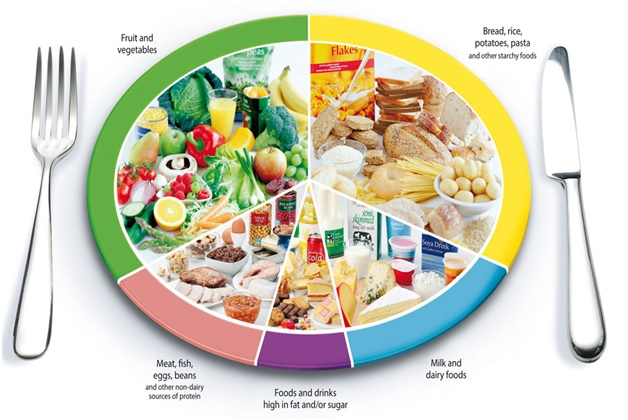 The eatwell plate of UK