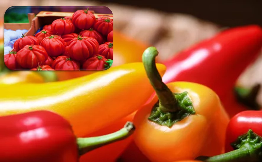 Tomatoes & Hot peppers