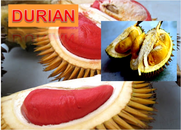 Durian - Click here to Read