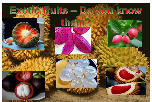 EXOTIC FRUIT WORLD - DO YOU KNOW THESE FRUITS?