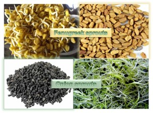 Fenugreek Sprouts & Onion Sprouts
