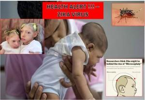 WHO DECLARES INTERNATIONAL HEALTH EMERGENCY OVER THE OUTBREAK OF ZIKA VIRUS