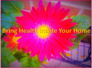 Bring Health Inside Your Home