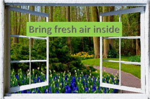 Bring Fresh Air Inside