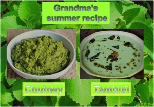 Grandma's Summer Recipe - Tambuli
