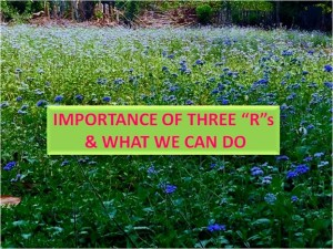 Importance of Three Rs & What we can do