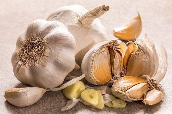 Healthy Food - Garlic