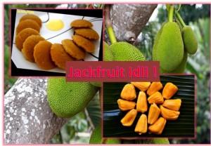 A traditional Karnataka Dish - Jackfruit Idli !