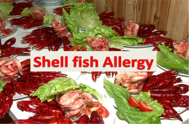 Shell fish allergy healthylife werindia for Fish allergy symptoms