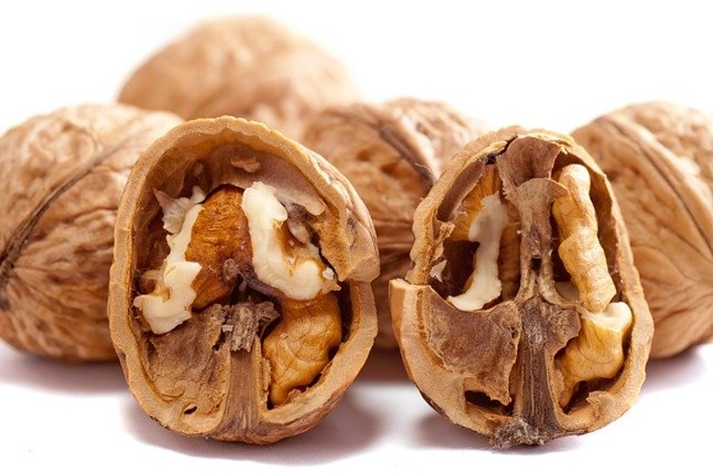 Healthy Food - Walnuts