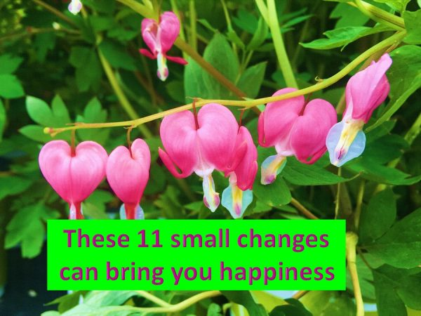 11 changes brings happiness