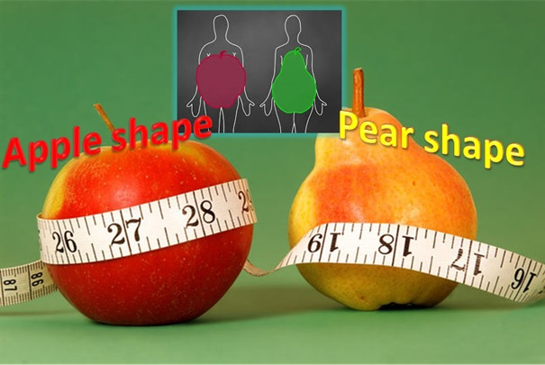 Apple-Shape-Pear-Shape-HealthyLife-WerIndia
