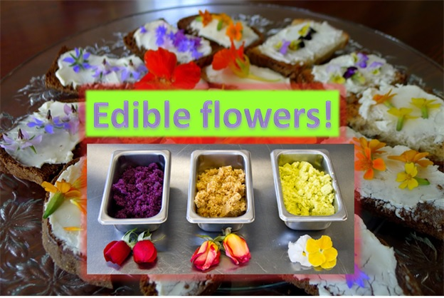 Culinary Power of Flowers