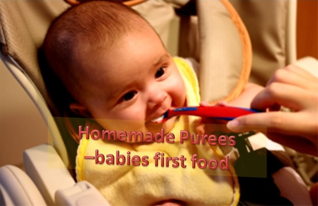 Homemade Purees - Babies First Food