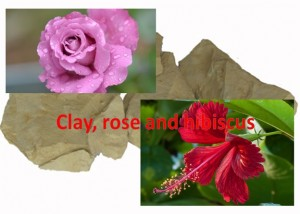 Clay, Rose and Hibiscus Mask