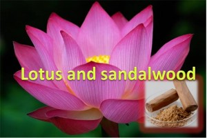 Lotus and Sandalwood Mask
