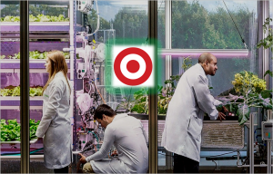 Target Stores To Launch In-Store Vertical Farms