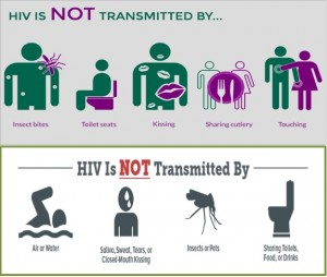 HIV - Not Transmitted By