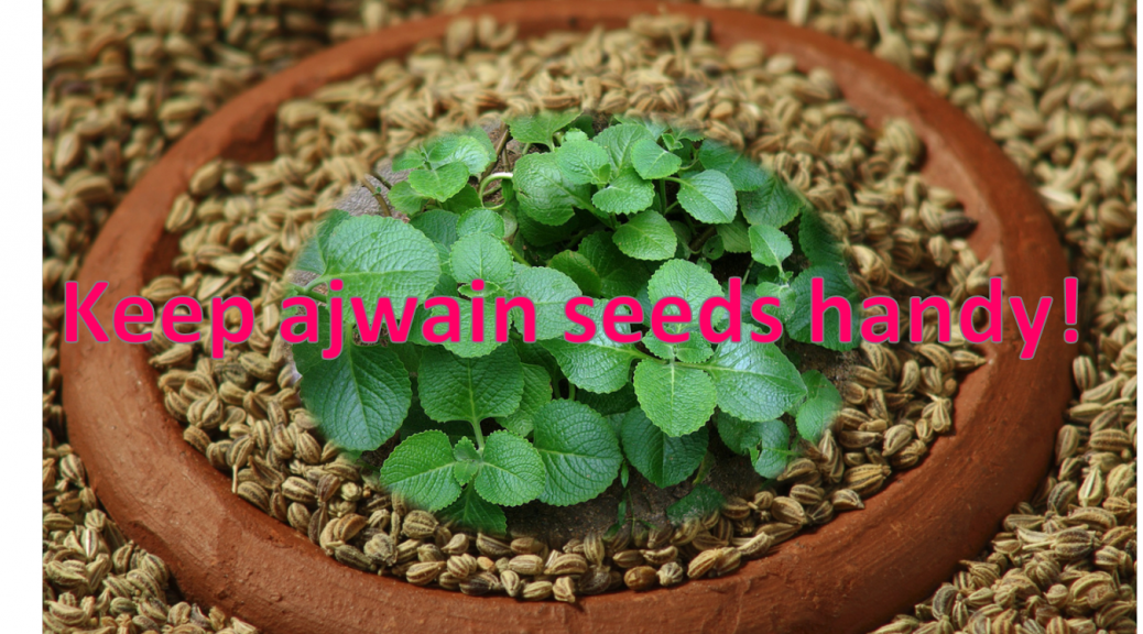 Keep Ajwain Seeds Handy