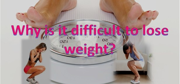 Why is difficult to lose weight?
