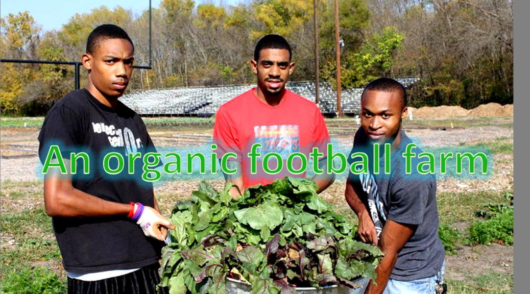 Organic Football Farm