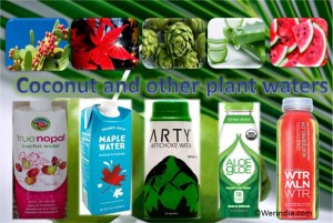 Coconut And Plant Waters