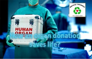 How An Organ Donation Saves Life?