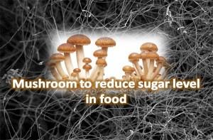 Mushroom To Take Away Bitterness