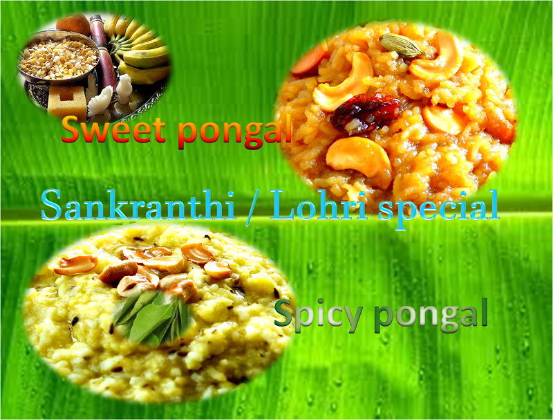Sweet and Spicy Pongal Recipes