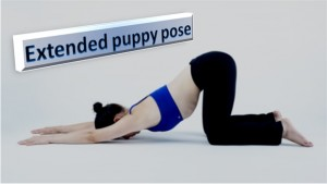 Extended Puppy Pose