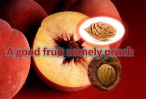 Peach - A Good Fruit