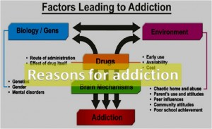 Reasons Leading To Drug Addiction
