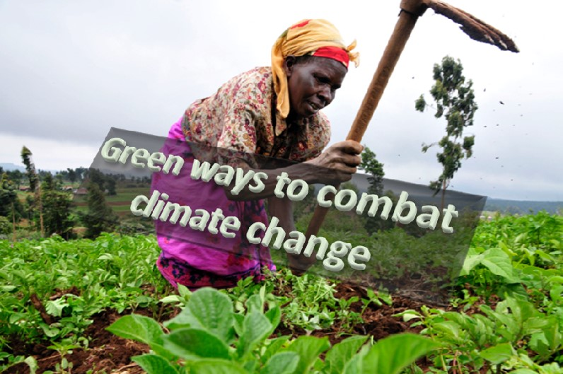 Green ways to combat climate change