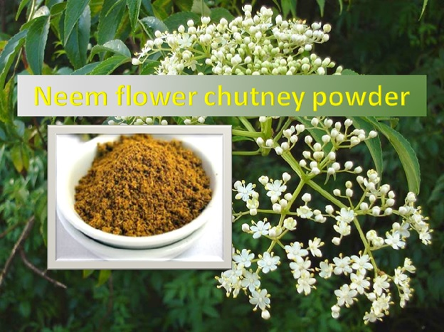 Neem Flower Chutney Powder