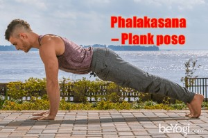 Plank-healthylife-werindia