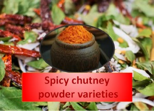 Spicy Chutney Powder Varieties