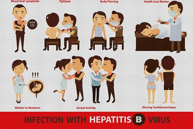 Hepatitis B Facts