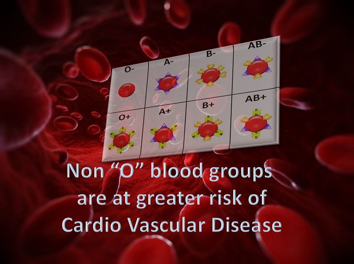 Non-O blood groups are at greater risk of Cardio Vascular Disease